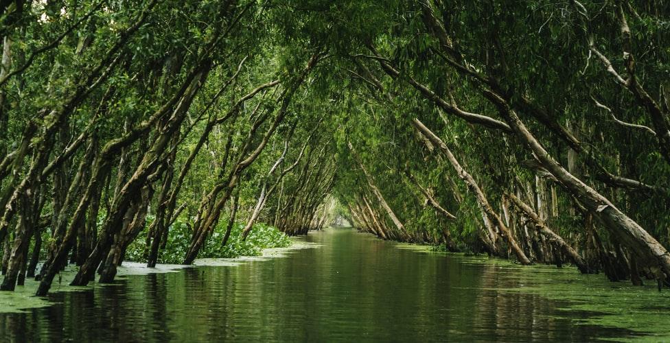 Most Affordable Ecotourism Destinations: 30 Must-Visit Ecotourism Destinations