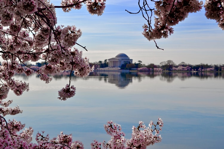 17 Best Free Things to do in Washington D.C: 35+ Free Attractions