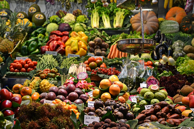 What is the Best Vegetable to Juice? Top 16 Vegetables to Juice