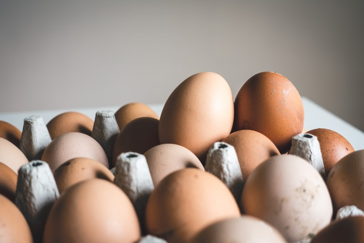 What are the Healthiest Types of Eggs? A Guide on the Labels of Eggs