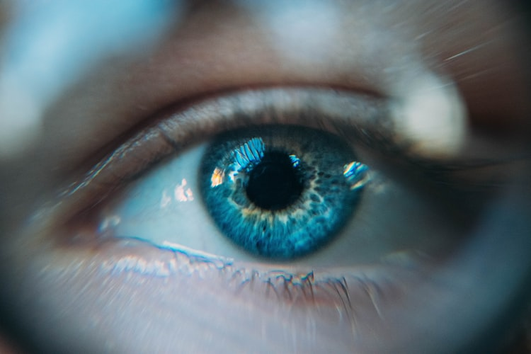 15 Best Foods to Help Protect and Improve Eyesight