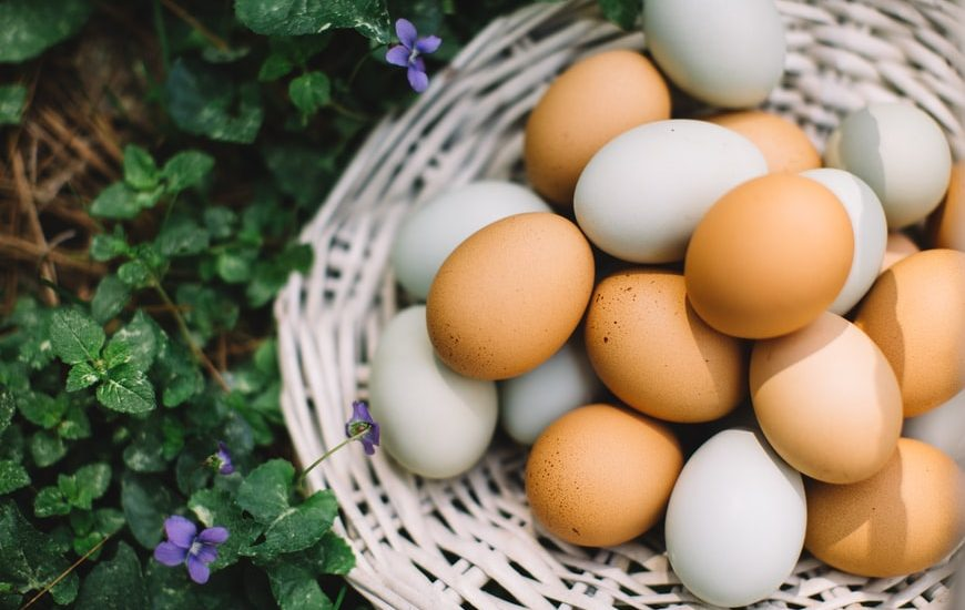 Eggs for Runners: Are Eggs Good Before a Run?